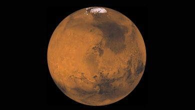 Photo of Mars is preparing to approach Earth this week, and you can watch the show