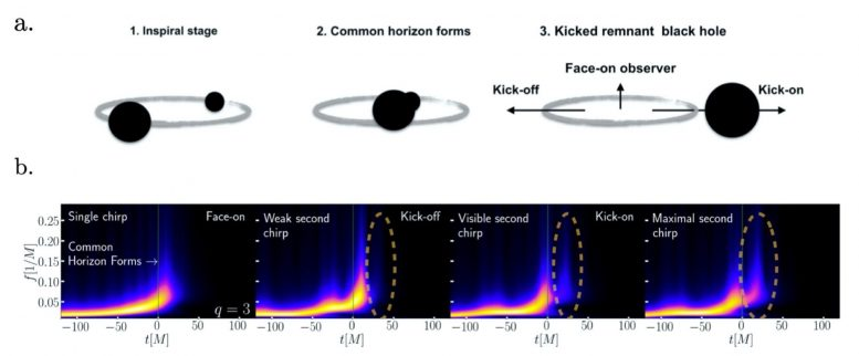 The stages of a black hole merger