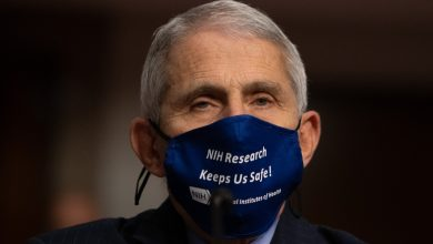 Photo of Fauci: There could be 300,000 to 400,000 deaths from Covid unless precautions are taken