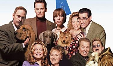 Photo of 30 In Show Dog Movie Reviews With Well Researched Buying Guide