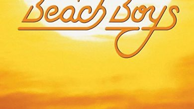 Photo of 30 Of Beach Boys Reviews With Well Researched Buying Guide