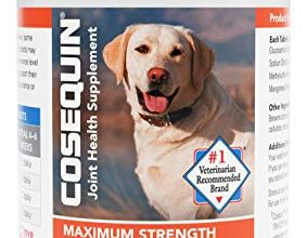 Photo of 30 Joint Supplement For Dogs Reviews With Well Researched Buying Guide