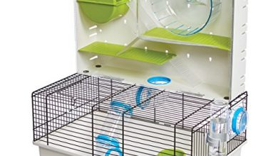 Photo of 30 Hamster Cage Reviews With Well Researched Buying Guide