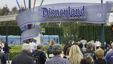 Photo of Disney shares are down more than 2 percent after analysts warned the company needs to do more after the coronavirus