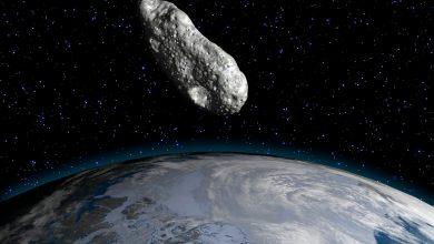Photo of A giant asteroid passes through Earth on Christmas Day