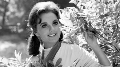 Photo of Dawn Wells, Mary Ann on Gilligan Island, Dies of Covid-19 Complications, Age 82