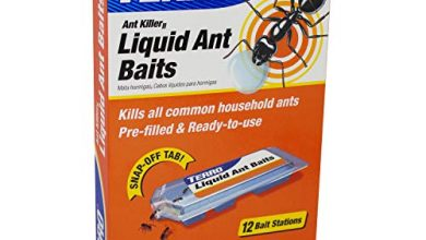 Photo of 30 Ant Killer Reviews With Well Researched Buying Guide