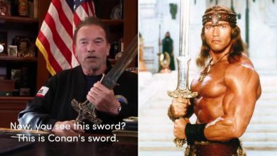 "Photo of Schwarzenegger draws Conan's sword against Trump: ""The congressional attack was the night of America's crystals"""