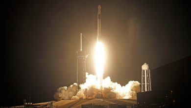 Photo of SpaceX completes its first rocket launch in 2021, by sending a communications satellite