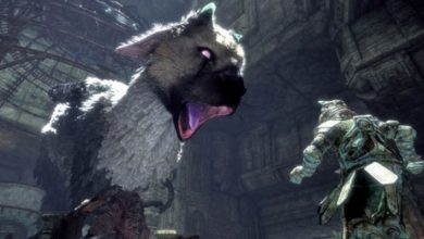 Photo of The Last Guardian on PS5 at 60fps is fun for Digital Foundry – Nerd4.life