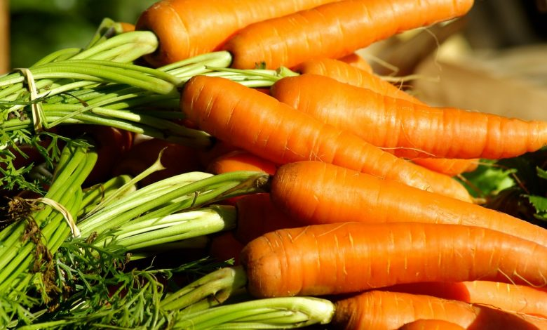 What are the best alkaline foods to include in your daily diet
