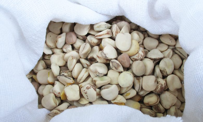 Eating these sweet legumes can cause harm, and we explain when and why