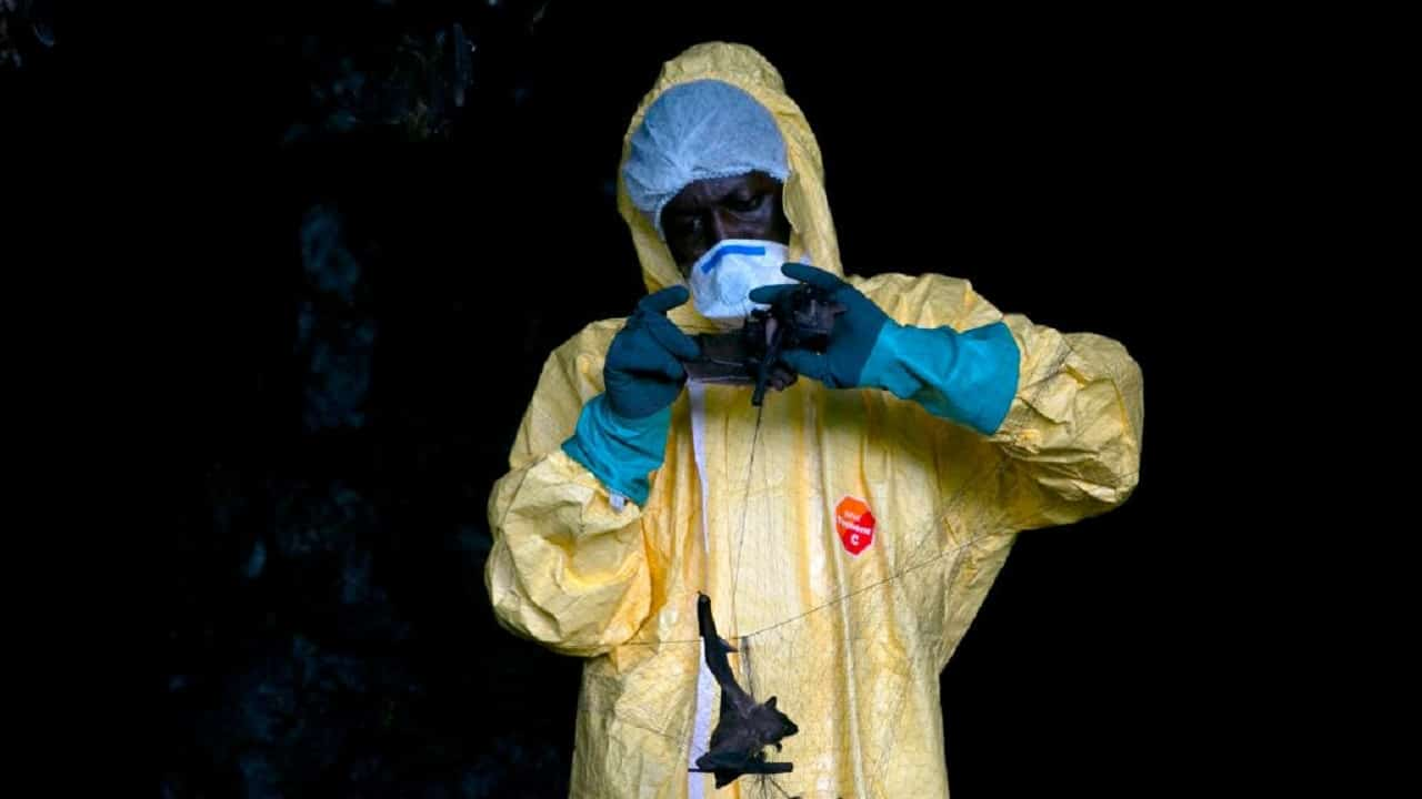 Photo of Ebola is frightening again, new outbreak: there are victims