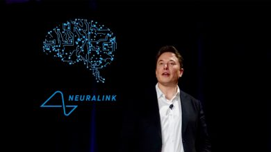 Photo of Elon Musk and Neuralink implanted a chip in a monkey's brain: 'Now play video games'