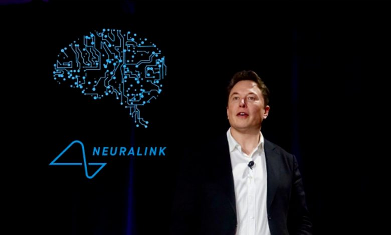 Elon Musk and Neuralink implanted a chip in a monkey's brain: 'Now play video games'