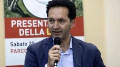 Photo of Regional Adviser Pettaro: Medicine in Cosenza?  Divisions are only at a critical stage '