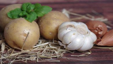 Photo of How to store garlic, potatoes and onions