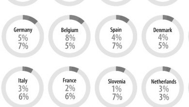 Photo of How many non-EU citizens live in the European Union?