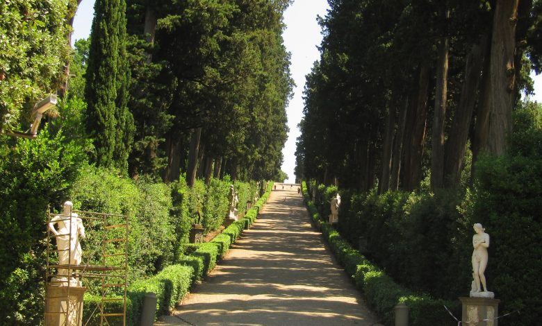 There are plants that are perfect for our garden paths and structures in between colors and scents