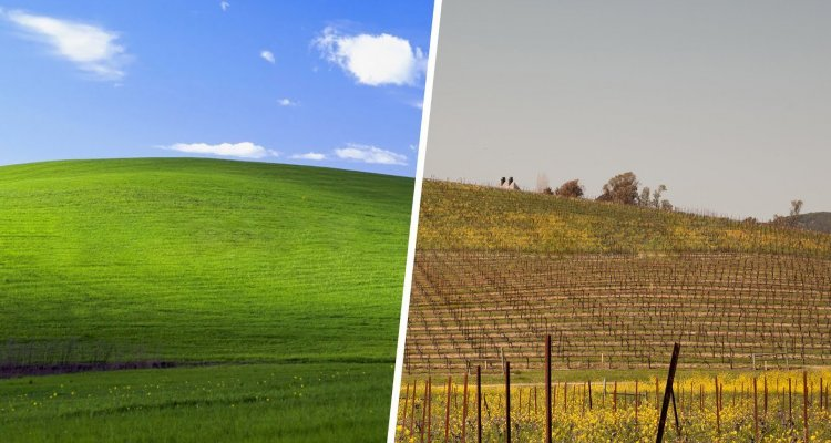 "Windows XP.  A video clip showing the hill in the background ""bliss"" as it is today"