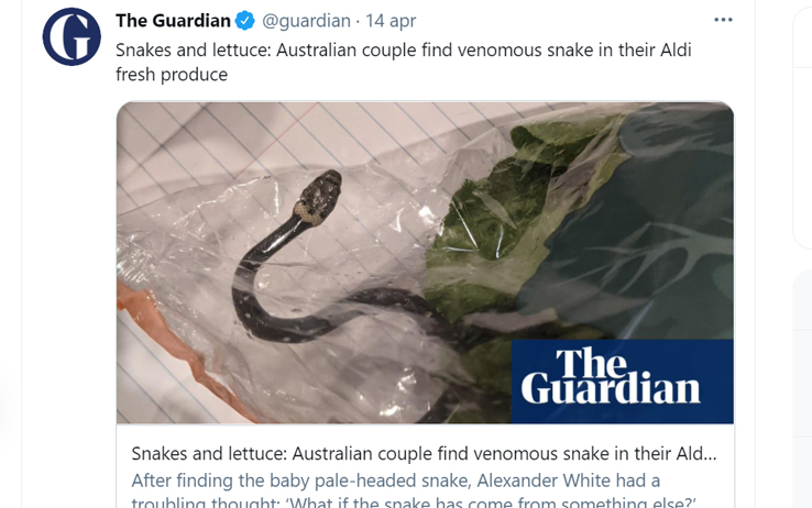 Il tweet del Guardian con l'immagine del serpente