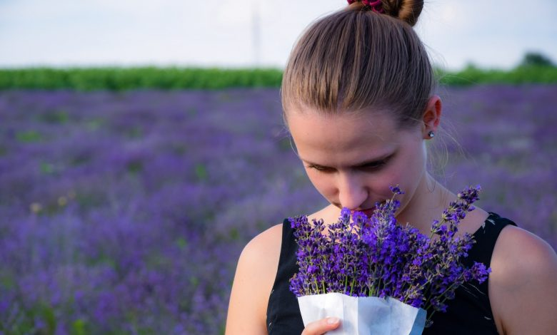 Here the most fragrant flowers in the world are revealed