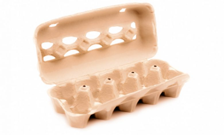 No one will ever throw an egg carton again when they discover that they are ideal for plant and childbirth health