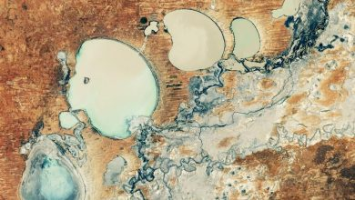 Photo of After five years of drought, the Minindi Lakes are making a comeback in Australia