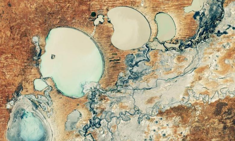 After five years of drought, the Minindi Lakes are making a comeback in Australia