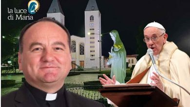 Photo of Bishop of Mostar in a private meeting with the Pope
