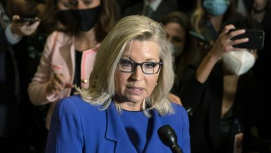Photo of Liz Cheney is missing from Italy