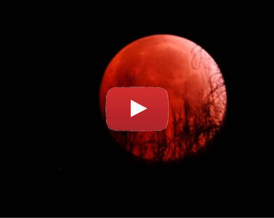 Photo of SUPERMOON is still big and soon will be red too!  We tell you when and for what reason.  Video »ILMETEO.it