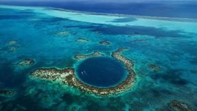 This is what's at the bottom of the Blue Hole, the huge blue hole in the Belize Sea