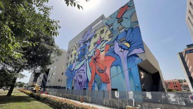 """Photo of Architect Vale: """"That mural should be wiped off the facade of Gino's parents' building."""""""