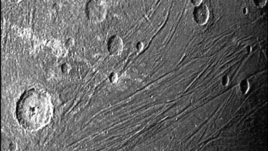 Photo of Craters and fractures on the largest moon in the solar system – space and astronomy