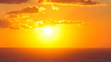 Photo of Here are the five reasons why the sun is a natural medicine