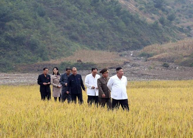 North Korea Kim lost the battle of wheat - Corriere.it