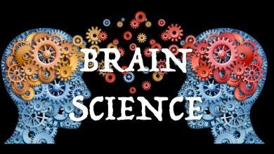 Photo of SCIENZ @SCHOOL/US Neuroscience Project