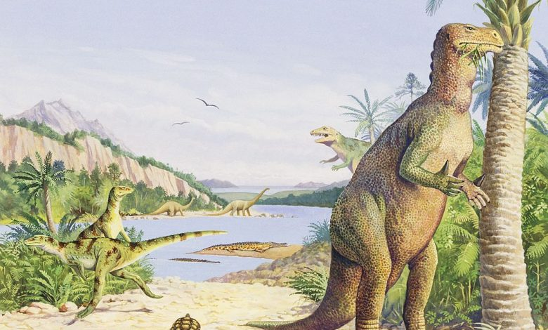 The footprints of the last dinosaurs that walked on UK soil were found near the White Cliffs of Dover