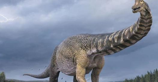 The largest dinosaur was found in Australia, it was 30 meters long - Corriere.it