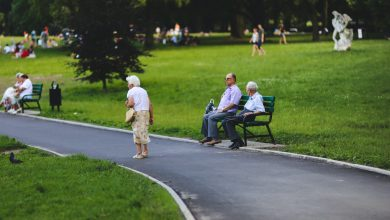 Photo of Disability allowance and 3 things to consider for pension and theoretical contributions