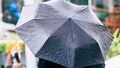 Photo of If it rains more, it is human fault: study