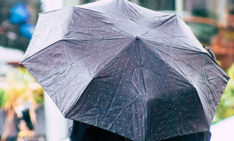 If it rains more, it is human fault: study