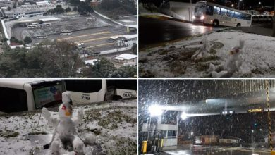 Photo of Southern States in Frost Grip, Lots of Snow in Serra Gaucha [FOTO]