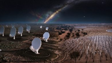 Photo of The green light to create the world's largest radio telescope network – space and astronomy