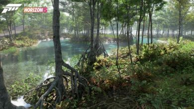 Photo of Videos and photos reveal 11 biomes, and they are beautiful – Nerd4.life