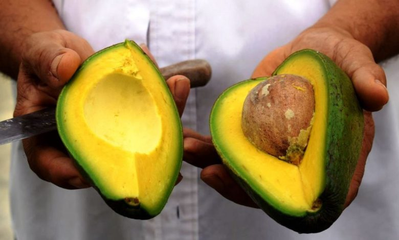 Scientists made 53 people eat an avocado every night, and here are the surprising effects