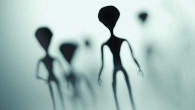 Photo of Curious to know when we will meet the aliens?  This is the most reliable estimate