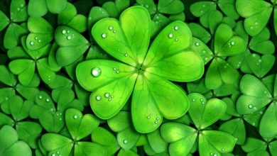 Photo of Luck really does exist: science says it!