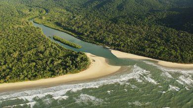 Photo of Australia: Daintree Forest returns to Aboriginal hands